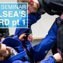 Lasso Seminar   Chelsea's Guard pt 1