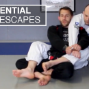 Essential Back Escapes