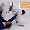De La Riva Attacks: Countering Common Passes