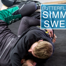 Butterfly Guard | Basic Sweeps