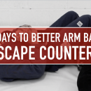 Arm Bar Escape Counters // 30 Days To Better Arm Bars