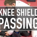 Fundamental Knee Shield Passes