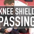 Fundamental Knee Shield Passes