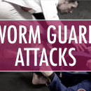 Worm Guard Attacks // Impact Martial Arts 2018