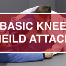 Basic Knee Shield Attacks