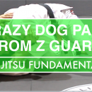 Crazy Dog Pass From Z Guard