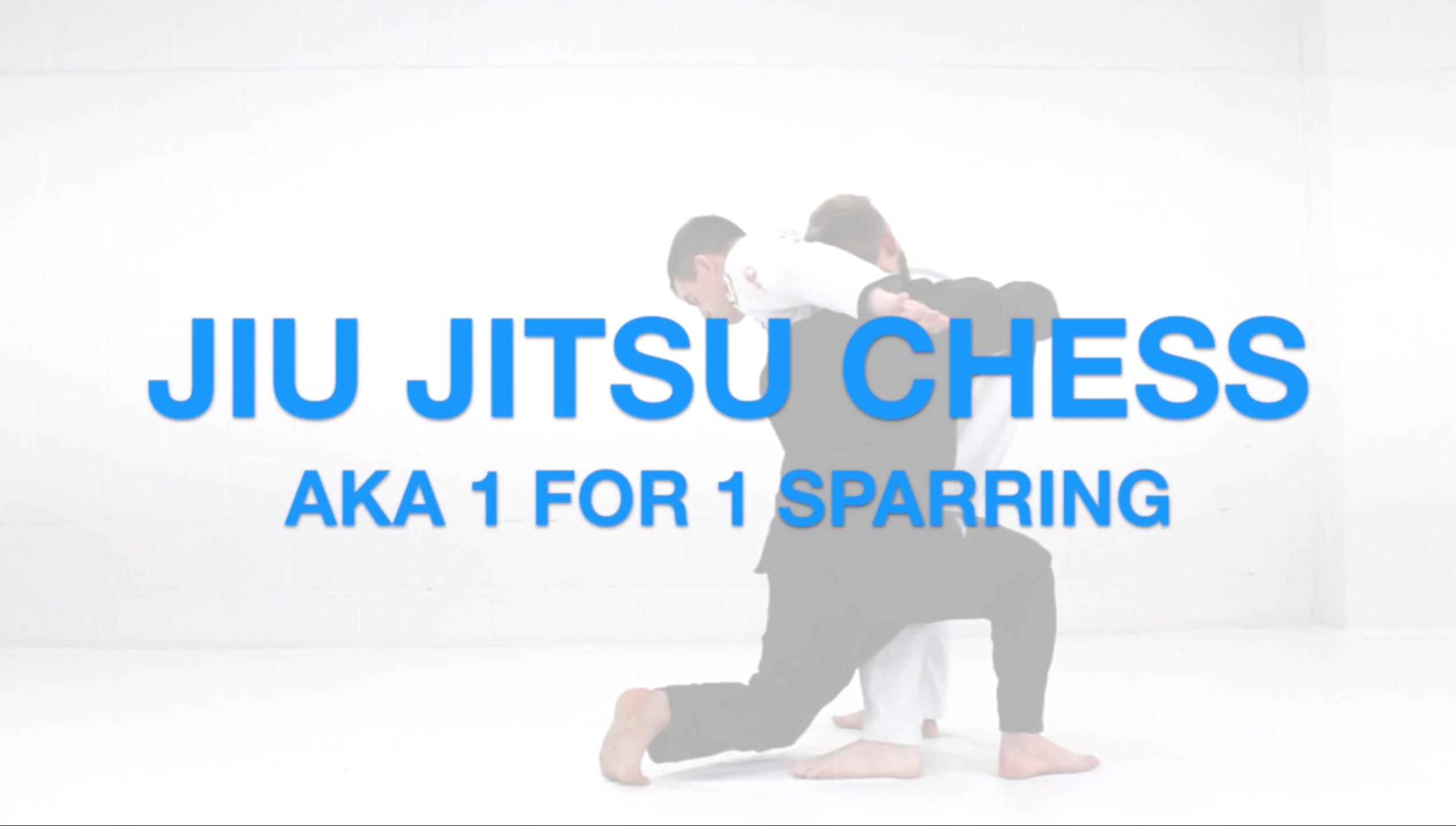 Jiu Jitsu Chess // 1 For 1 Sparring for Jiu Jitsu