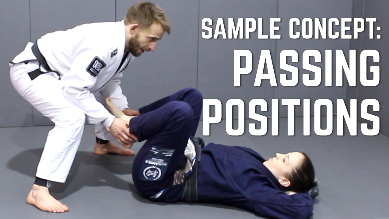 Beginner's BJJ Curriculum Sample Concept: Positional Controls